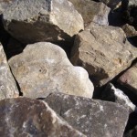 Medium Stackable Tennessee Fieldstone